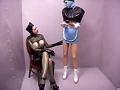 Rubber maid  Free Latex snapass.com
